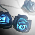 Blue Roses Shine by Alex Art and Photo