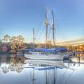 Blue Sail by Christine DuMouchel
