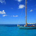Blue Sailing by Perry Webster