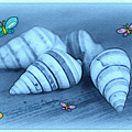 Blue Seashells by Linda Sannuti