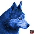 Blue Siberian Husky Art - 6048 - Wb by James Ahn