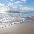 Blue Skies South Padre Island Texas by Gabriel G Medina