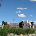 Blue Sky In Arizona by Gloria Byler