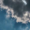 Blue Sky Solar Eclipse by Krystal Billett