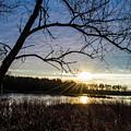 Blue Sky Sunrise On The Marsh by Angela Mocniak