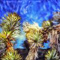 Blue Sky Yucca by Paul Tokarski