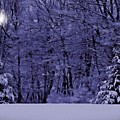 Blue Snow by David Dehner