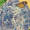 Blue Splendor by Kim Mlyniec