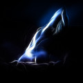 Blue Stretch 4023 by Timothy Bischoff