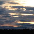 Blue Sunset by Carol Groenen