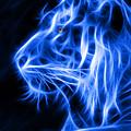 Blue Tiger by Shane Bechler