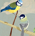 Blue Tit And Great Tit by Carl Conway