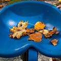 Blue Tractor Seat by Douglas Barnett