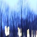 Blue Trees  by Radka Zimova King
