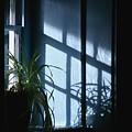 Blue Wall by Hideaki Sakurai