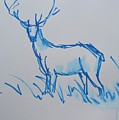 Blue Watercolor Brushed Line Drawing Of A Stag With Antlers by Mike Jory