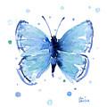 Blue Watercolor Butterfly by Olga Shvartsur
