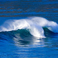 Blue Wave by Randall Ingalls