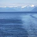 Blue Waves by Carol  Eliassen