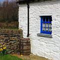 Blue Window by Jennifer Robin