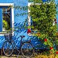 Blue Window With Bike by Roberta Bragan