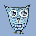 Blue Woot Owl by BubbSnugg LC