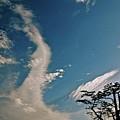 Blue Yonder by Lori Leigh