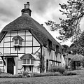 Bluebell Cottage Micheldever by Shirley Mitchell