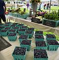 Blueberries, Farmers Market, Brunswick, Maine #60229 by John Bald