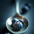 Blueberries Macro Still Life by Johan Swanepoel