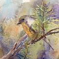 Bluebird by Elizabeth Evans