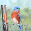 Bluebird On Barbed Wire Oil Painting by Donna Tuten