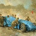 Bluebird by Peter Miller
