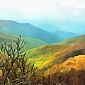 Blueridge - Spring by Judy Coggin