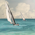 Bluewater Cruising Sailboats by IM Spadecaller