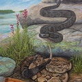 Bluffside Timber Rattler  by Sherri Anderson