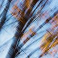 Blur by Yulia Kazansky