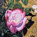 Blushing Rose by Caroline Street