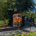 Bnsf Coming Around The Curve by Thomas Visintainer