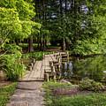 Boardwalk Bridge Maymont Japanese Garden by Karen Jorstad