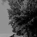 Boardwalk by Ian  MacDonald