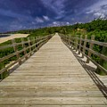 Boardwalk In Color by Giovanni Arroyo