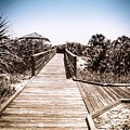 Boardwalk by Kendall Tabor