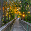 Boardwalk Sunset by Lance Raab