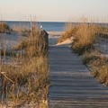 Boardwalk To The Beach by Nadine Rippelmeyer