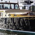 Boat by Agnieszka Adamska