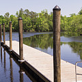 Boat Dock And Pilings On The Waccamaw River At Conway by MM Anderson