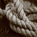 Boat Rope Sepia Tone by Alan Bartl