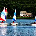 Boat - Striped Sails by Susan Savad
