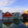 Boathouse Reflections by Deborah Napelitano